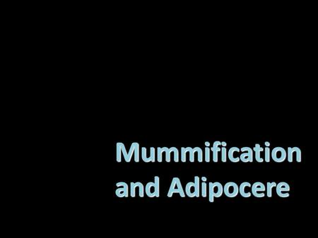 Mummification and Adipocere. The Optimum Conditions for Mummification  dry & warm climate. Once the changes are complete, the body will remain in that.