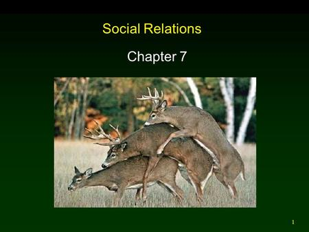 1 Social Relations Chapter 7. 2 Introduction Behavioral Ecology: Interactions between organisms and the environment mediated by behavior. Sociobiology: