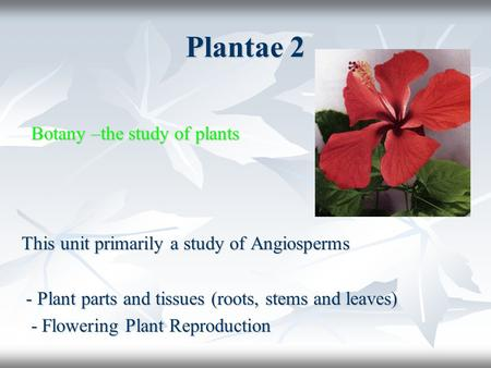 Plantae 2 Botany –the study of plants Botany –the study of plants This unit primarily a study of Angiosperms - Plant parts and tissues (roots, stems and.