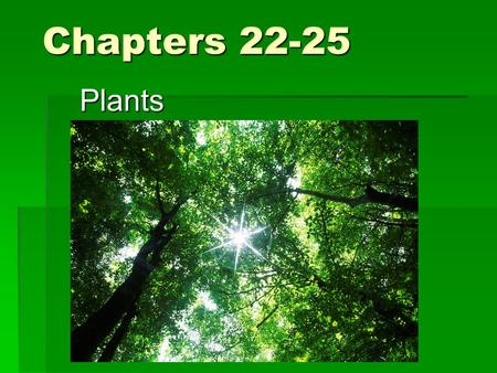 Chapters 22-25 Plants. Characteristics  Eukaryotes  Multicellular  Cell walls of cellulose  Carry out photosynthesis using pigments chlorophyll a.