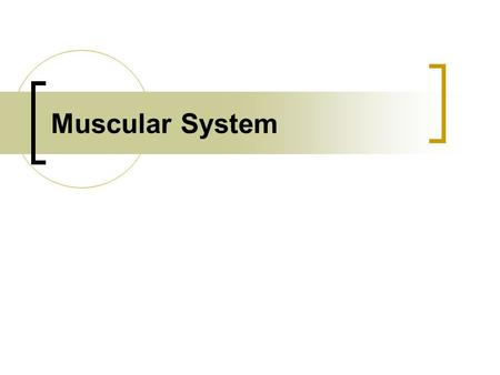 Muscular System. Muscle Tissues Skeletal Muscle Smooth Muscle Cardiac Muscle.
