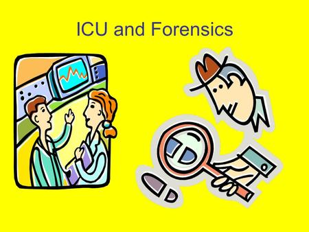 ICU and Forensics. 1.Describe information which should be consistently communicated by healthcare providers for those patients thought to be injured due.