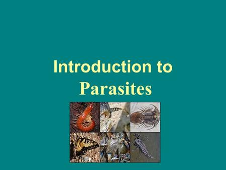 Introduction to Parasites. Introduction Parasite is an organism baring food and shelter temporarily or permanent and living in or on another organism.