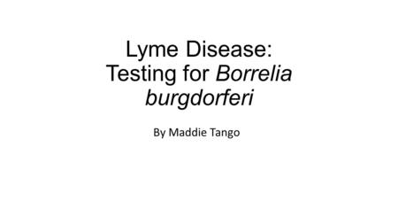 Lyme Disease: Testing for Borrelia burgdorferi By Maddie Tango.