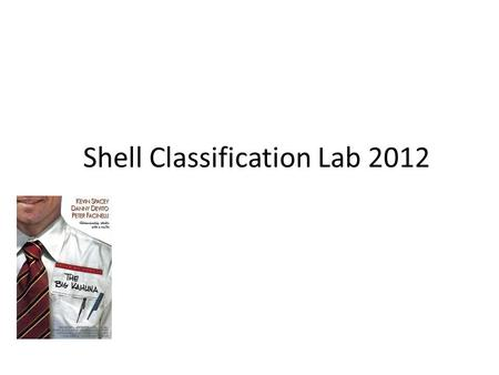 "Shell Classification Lab 2012. I. TITLE: Shell classification lab II. PURPOSE : to classify and prepare a ""key"" that allows for identification of."