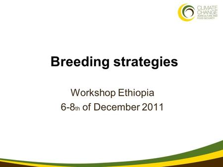 1 3/21/11 Breeding strategies Workshop Ethiopia 6-8 th of December 2011.