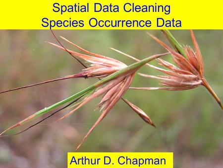 June 2012 Spatial Data Cleaning Species Occurrence Data Arthur D. Chapman.