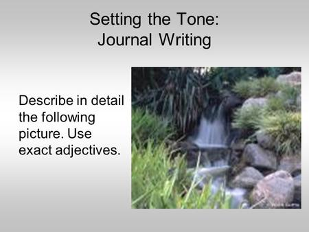 Setting the Tone: Journal Writing Describe in detail the following picture. Use exact adjectives.