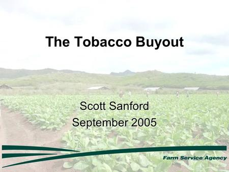 The Tobacco Buyout Scott Sanford September 2005. Outreach 500,000 official signup letters sent to quota holders and producers (6,000 printed in Spanish)