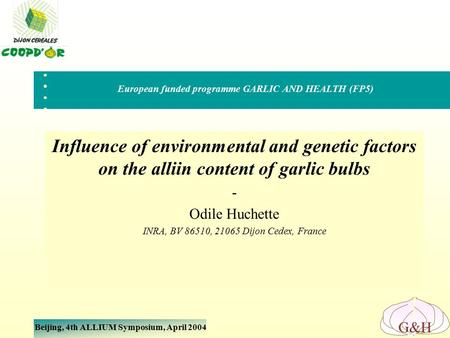 Beijing, 4th ALLIUM Symposium, April 2004 G&H Influence of environmental and genetic factors on the alliin content of garlic bulbs - Odile Huchette INRA,