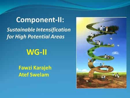 WG-II Sustainable Intensification for High Potential Areas Component-II: Fawzi Karajeh Atef Swelam.