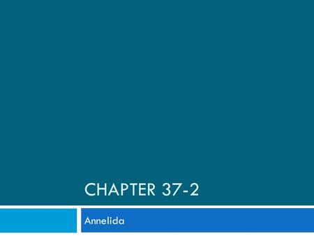 Chapter 37-2 Annelida.