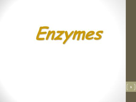 Enzymes 1. Proteins Contain ______________________________ ______________________________ ______________________________ _________bound by ________________bonds.