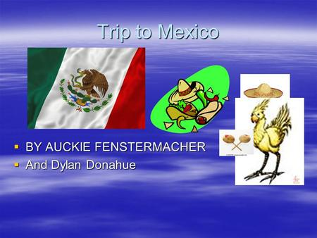 Trip to Mexico  BY AUCKIE FENSTERMACHER  And Dylan Donahue.
