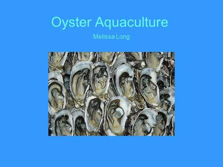 Oyster Aquaculture Melissa Long.