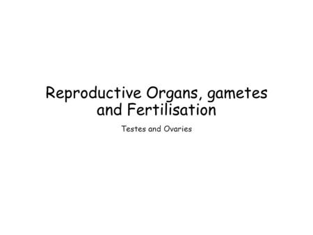Reproductive Organs, gametes and Fertilisation Testes and Ovaries.