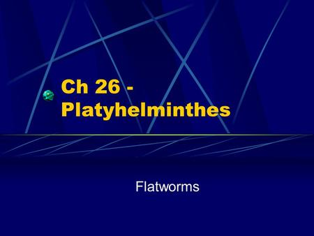 Ch 26 - Platyhelminthes Flatworms.