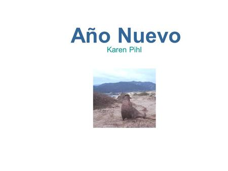 Año Nuevo Karen Pihl. What to Bring. n Bring warm clothes and rain gear. No umbrellas. n Shoes for mud. n Bring binoculars, cameras. n You will need money.