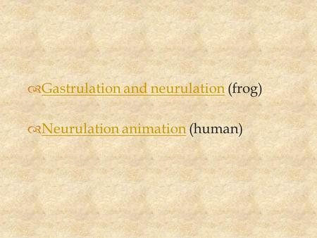  Gastrulation and neurulation (frog) Gastrulation and neurulation  Neurulation animation (human) Neurulation animation.