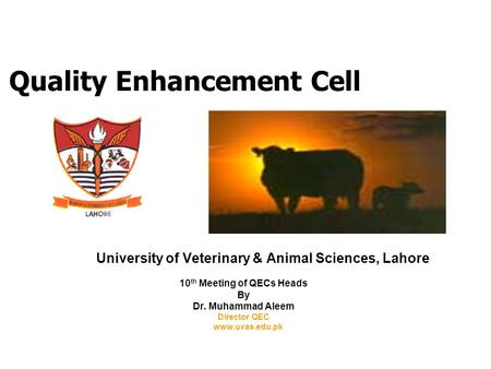 Quality Enhancement Cell University of Veterinary & Animal Sciences, Lahore 10 th Meeting of QECs Heads By Dr. Muhammad Aleem Director QEC www.uvas.edu.pk.
