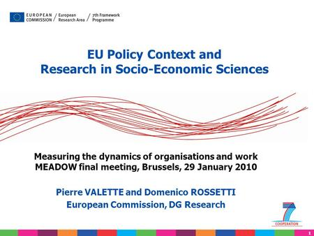 1 EU Policy Context and Research in Socio-Economic Sciences Measuring the dynamics of organisations and work MEADOW final meeting, Brussels, 29 January.