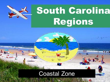 South Carolina Regions Coastal Zone Maritime Forest Maritime Forest tend to stay unchanged over a long period of time. Although hurricanes, fires, or.