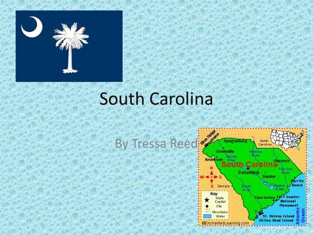 South Carolina By Tressa Reed. Columbia, South Carolina Columbia was the first city in South Carolina. You could attend the University of South Carolina.