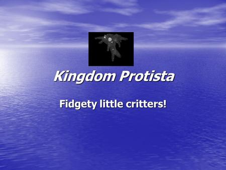 Kingdom Protista Fidgety little critters!. What is a Protist? Eukaryotic Eukaryotic –Has a nucleus! Mostly single celled Mostly single celled Classified.