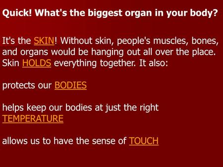 Quick! What's the biggest organ in your body? It's the SKIN! Without skin, people's muscles, bones, and organs would be hanging out all over the place.