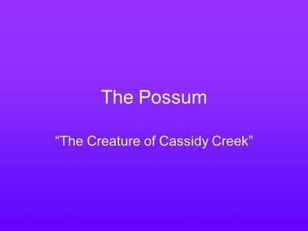"The Possum ""The Creature of Cassidy Creek"". Facts Size of a cat; grey to black fur; black eyes; pink nose, feet and tail; black ears; and pointed nose."