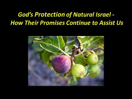God's Protection Strategy Promises that link natural & spiritual Israel Protective strategies Protection promises Protection benefits.