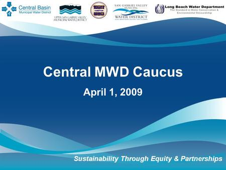 Central MWD Caucus April 1, 2009 Sustainability Through Equity & Partnerships.