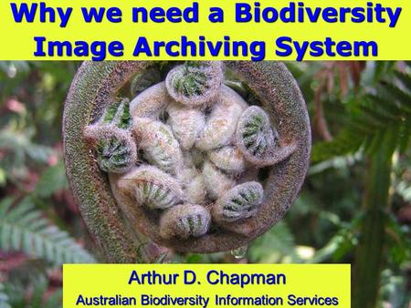 Why we need a Biodiversity Image Archiving System Arthur D. Chapman Australian Biodiversity Information Services.