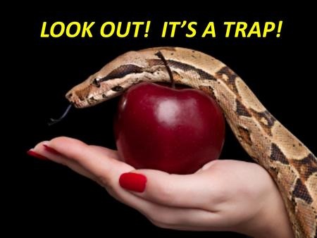 "LOOK OUT! IT'S A TRAP!. Luke 21:34-36 34 35 36 34 ""But take heed to yourselves, lest your hearts be weighed down with carousing, drunkenness, and cares."