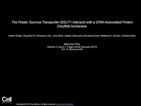 The Potato Sucrose Transporter StSUT1 Interacts with a DRM-Associated Protein Disulfide Isomerase Undine Krügel, Hong-Xia He, Konstanze Gier, Jana Reins,
