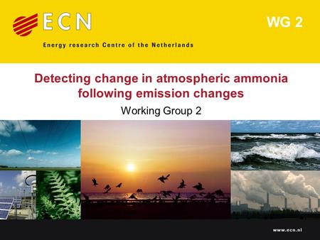 Www.ecn.nl Detecting change in atmospheric ammonia following emission changes Working Group 2 WG 2.