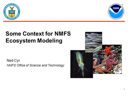 1 Some Context for NMFS Ecosystem Modeling Ned Cyr NMFS Office of Science and Technology.