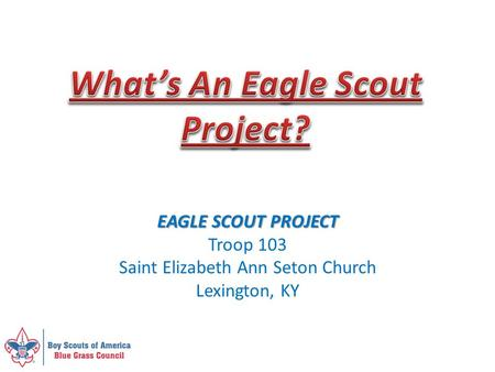 What's An Eagle Scout Project?