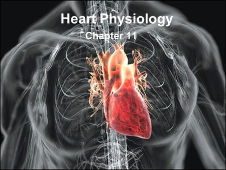 Heart Physiology Chapter 11.