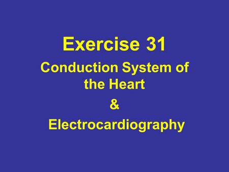 Conduction System of the Heart & Electrocardiography