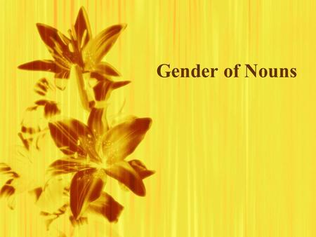 Gender of Nouns. Nouns  Are names of people, places, things or concepts  In Spanish, nouns are either masculine or feminine.  Are names of people,