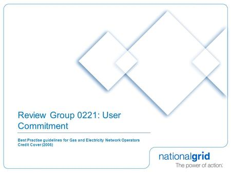 Review Group 0221: User Commitment Best Practise guidelines for Gas and Electricity Network Operators Credit Cover (2005)