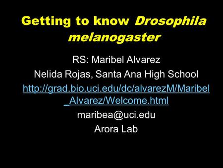 Getting to know Drosophila melanogaster RS: Maribel Alvarez Nelida Rojas, Santa Ana High School  _Alvarez/Welcome.html.