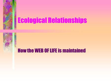 Ecological Relationships How the WEB OF LIFE is maintained.