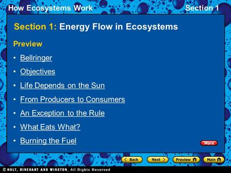 How Ecosystems WorkSection 1 Section 1: Energy Flow in Ecosystems Preview Bellringer Objectives Life Depends on the Sun From Producers to Consumers An.
