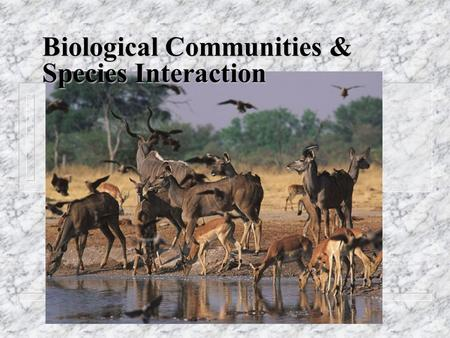 Biological Communities & Species Interaction. Who Lives Where and Why? nCnCritical Factors and Tolerance Limits 1. nutrients, temperature, water supply,