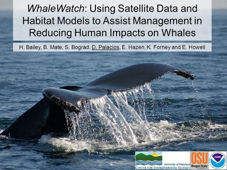 WhaleWatch: Using Satellite Data and Habitat Models to Assist Management in Reducing Human Impacts on Whales H. Bailey, B. Mate, S. Bograd, D. Palacios,