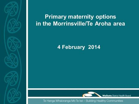 Primary maternity options in the Morrinsville/Te Aroha area 4 February 2014.