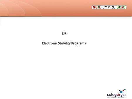 ESP Electronic Stability Programs