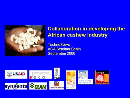 Collaboration in developing the African cashew industry TechnoServe ACA Seminar Benin September 2006 Global Trading and agency bv.